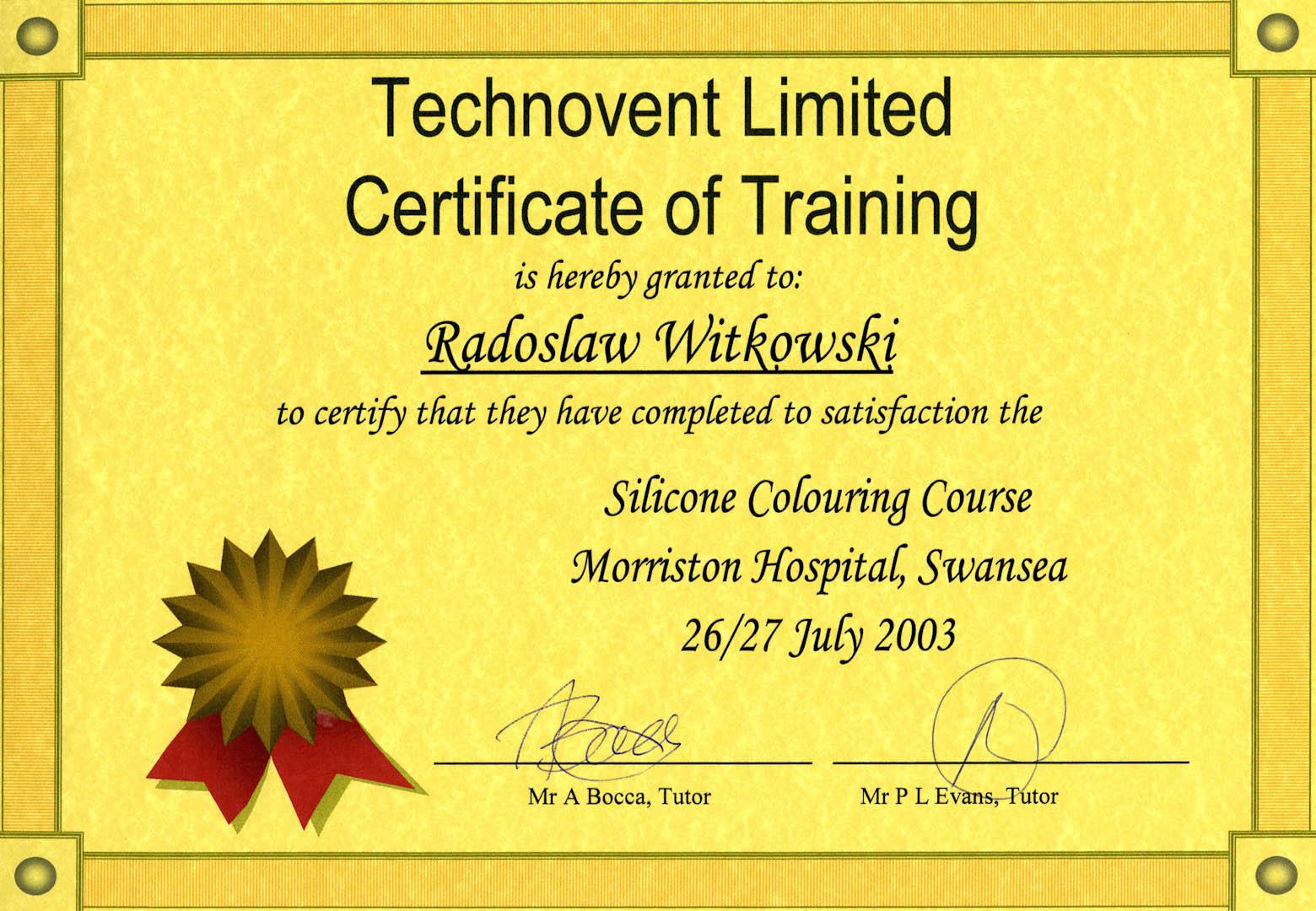 Certyfikat 2003.06.26 szkolenie Swansea